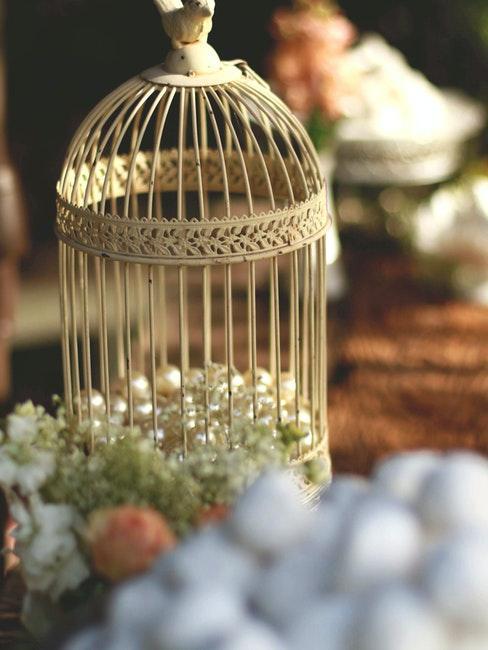 gabbie per uccelli shabby
