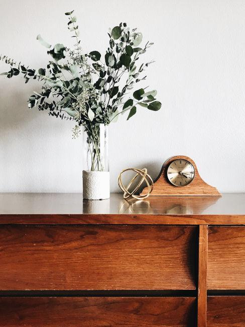 Eucalipto decorativo in vaso