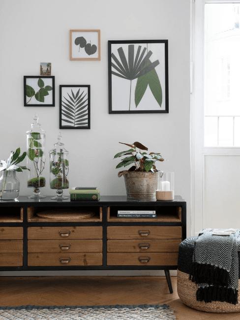 cassettiera in legno scuro con piante e stampe