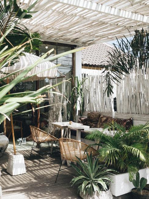 urban jungle in spazio esterno casa