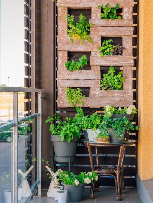 scaffalatura in pellet con piante