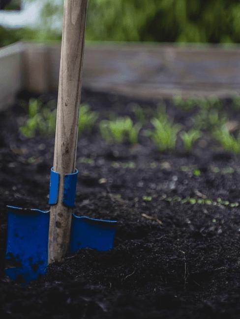 Orto in giardino: lavori in corso