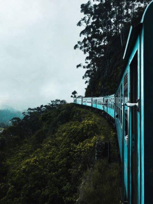treno in mezzo alla natura con cielo grigio