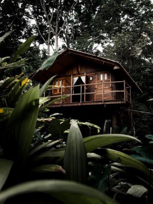 casetta giardino su albero