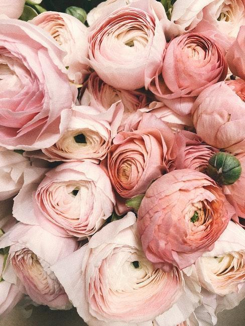 colori matrimonio fiori rosa