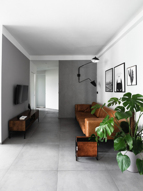 Salotto con divano marrone e pianta