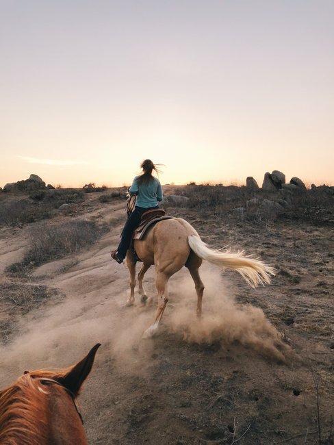 regali di laurea gita a cavallo