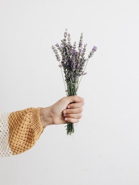 Biglietto di natale fai da te con le erbe