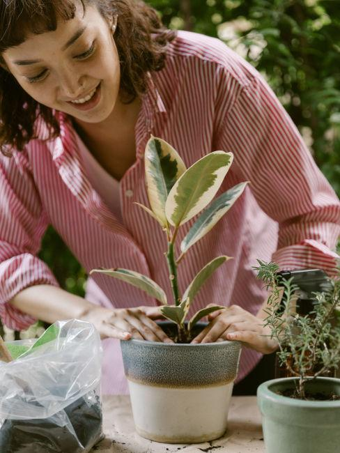 Prendersi cura delle piante
