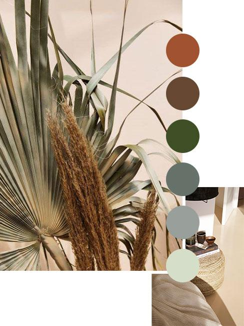 color palette grounding