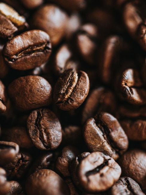 Caffè contro le formiche