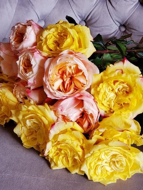 Peonie gialle e rosa