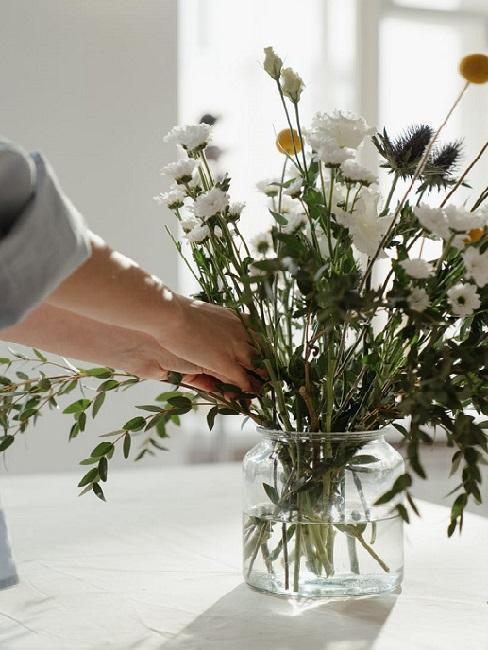 Fiori invernali: Crisantemo