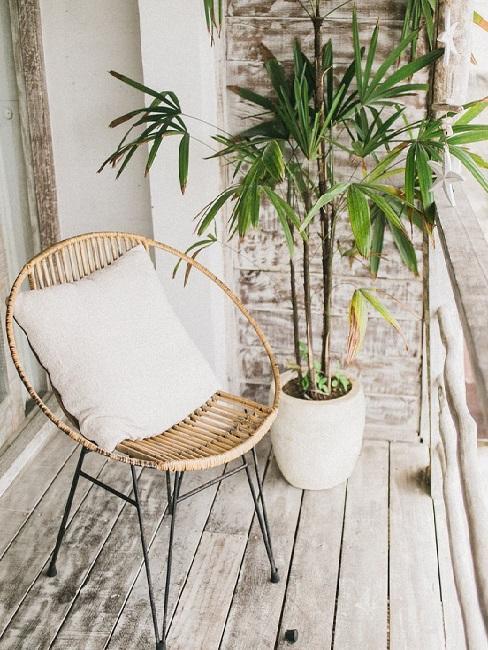 balcone con pianta