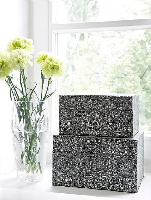 scatole con vaso