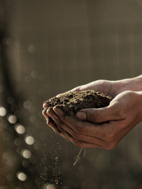preparare il terreno del giardino