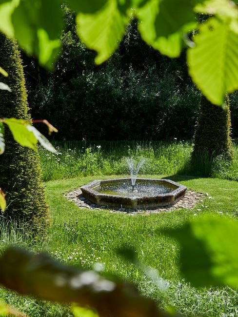 Giardino alla francese: giochi d'acqua