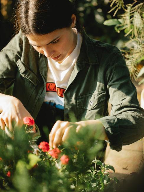 Preparare il giardino