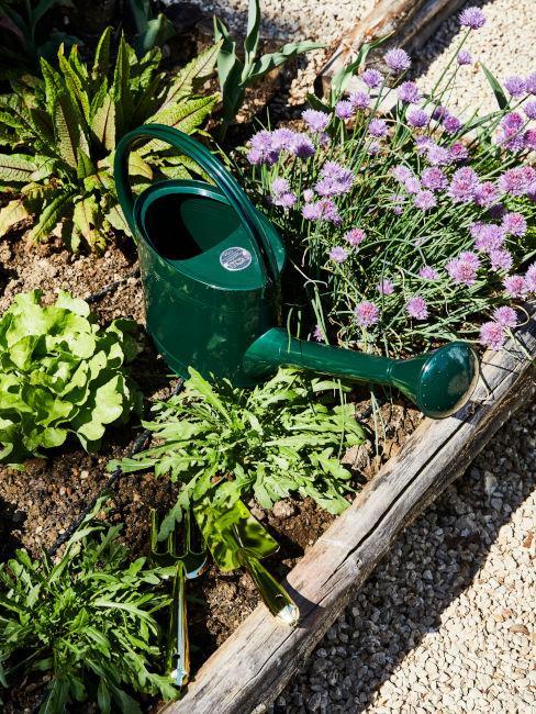 strumenti per la cura del giardino