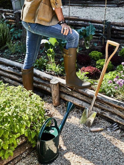 Come fare un giardino da zero