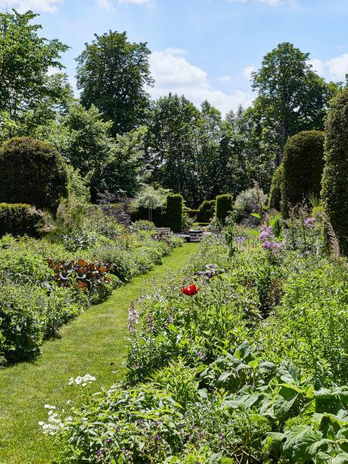 Esempio giardino con siepi, aiuole e fiori