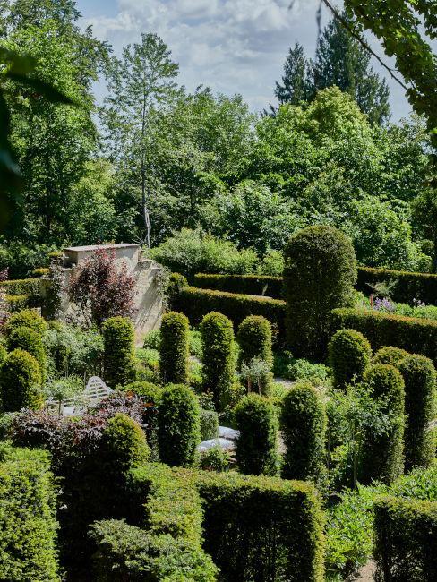 Esempio di layout per giardino con siepi