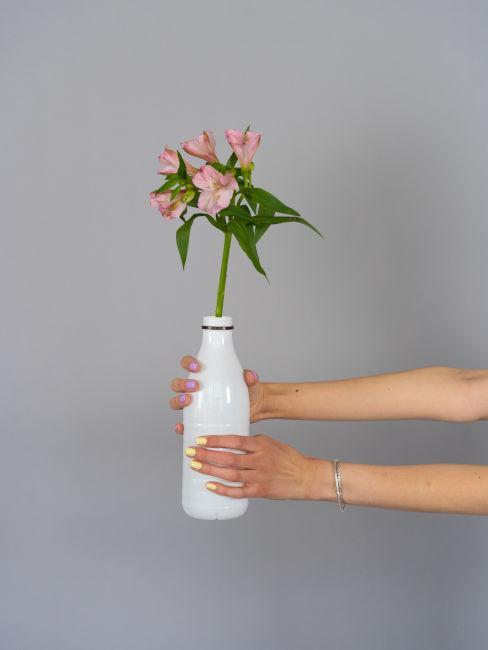 Bottiglia di plastica trasformata in vaso