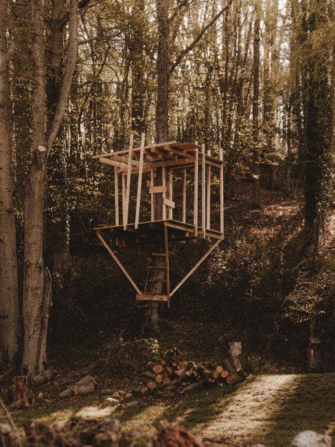 progettazione casa sull'albero