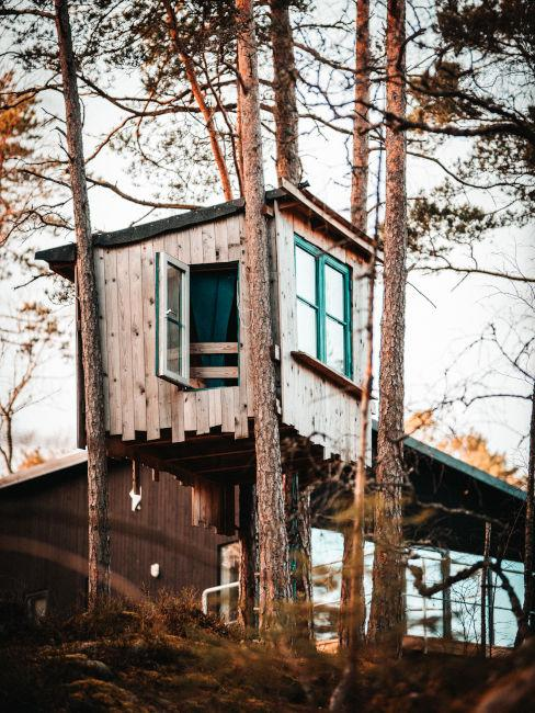 casa sull'albero giardino