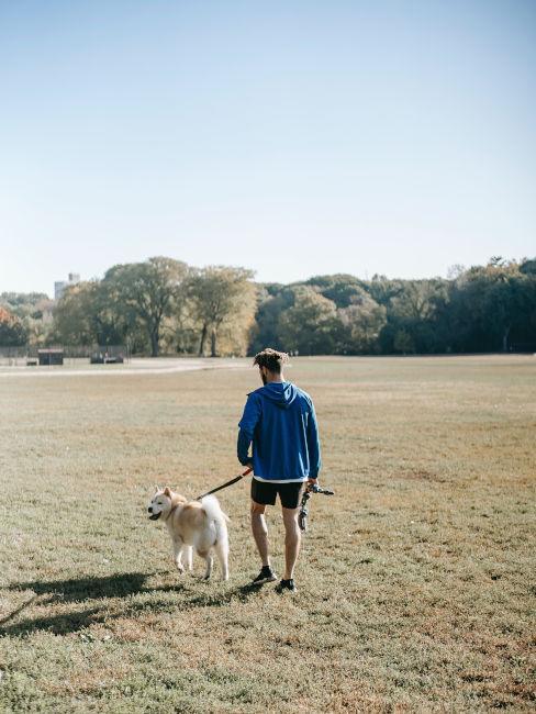 camminate con il cane