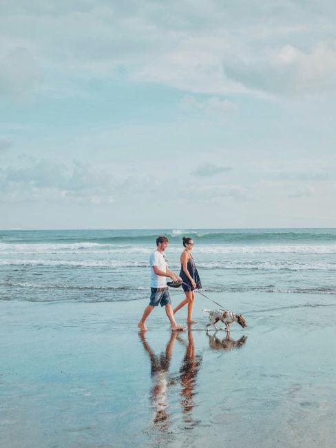 passeggiate in spiaggia all'alba