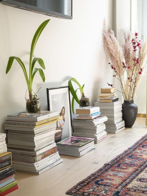 Libri e piante da interno
