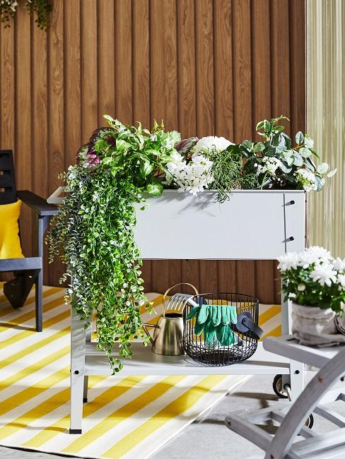 Fioriera alta con fiori e piante