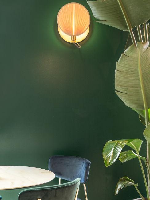 Angolo con pianta e parete verde