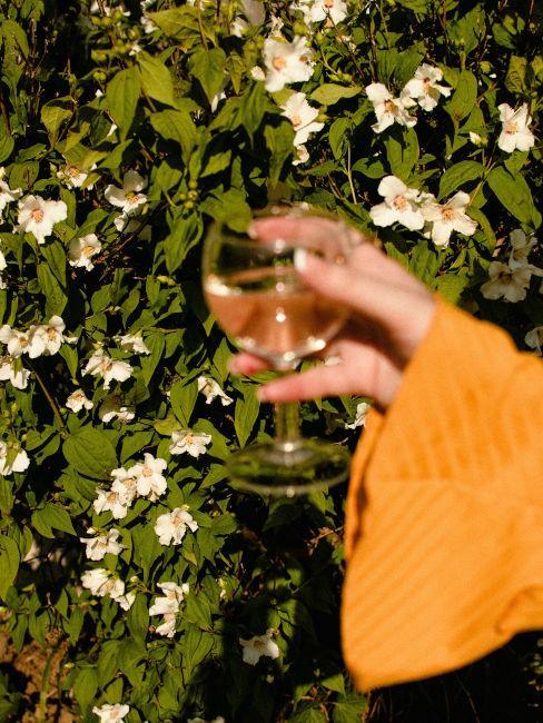 gelsomini con mano che tiene bicchiere di vino