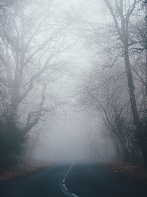 Strada nella nebbia