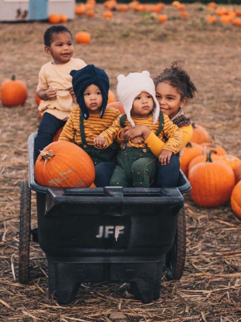 bambini su carretto in un campo di zucche