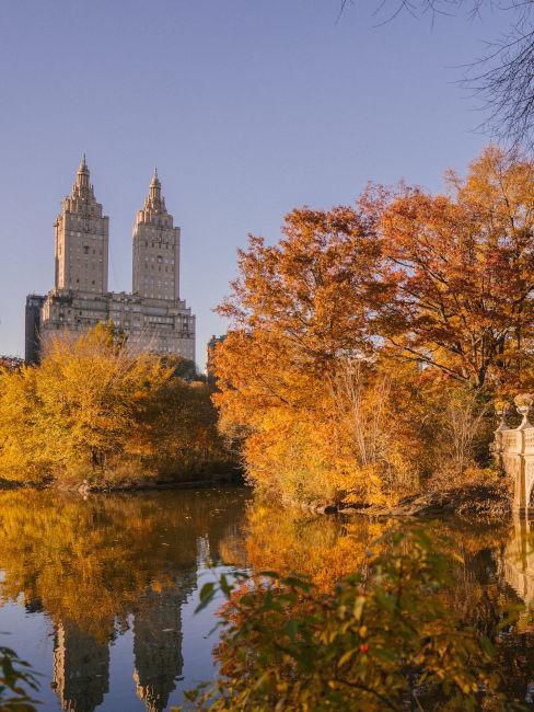 lago con alberi ingialliti in autunno