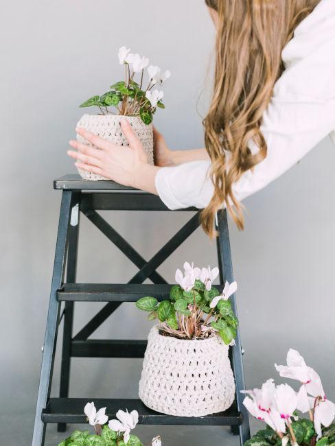 scaletta in legno con fiori