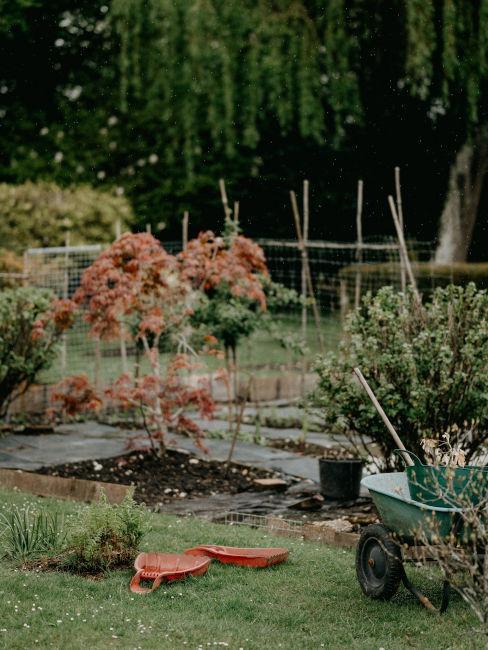 giardino autunnale