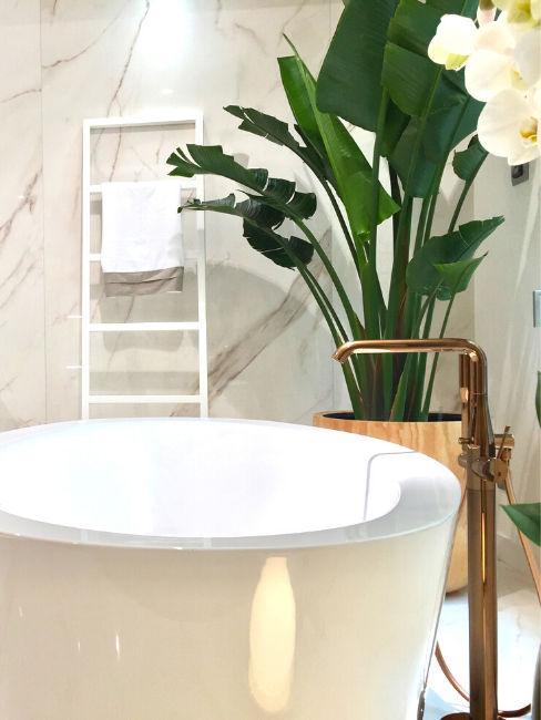 Dettaglio bagno con vasca e pianta