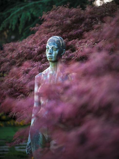 Il giardino delle statue