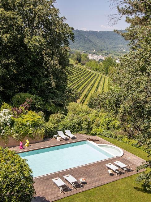 Piscina all'aperto con vista sulle vigne