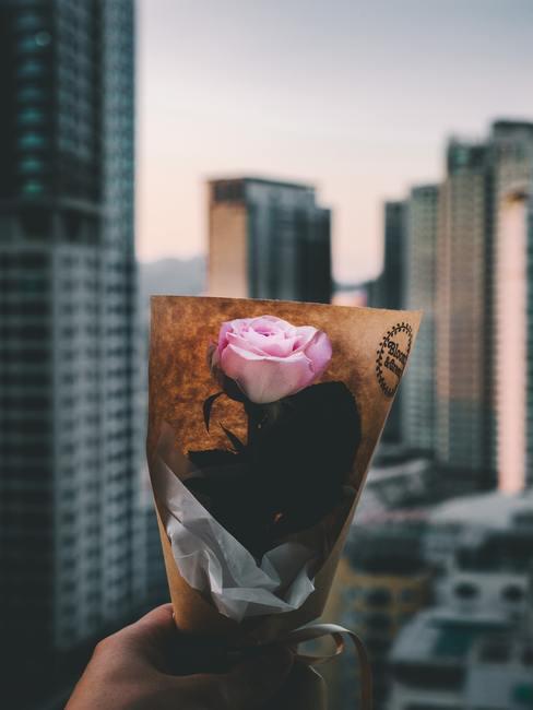 Verpakt bloemen in zijdepapier