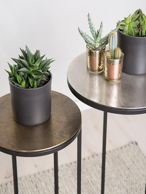 Plantenpotten in grijs en goud kleur op metalen bijzettafels