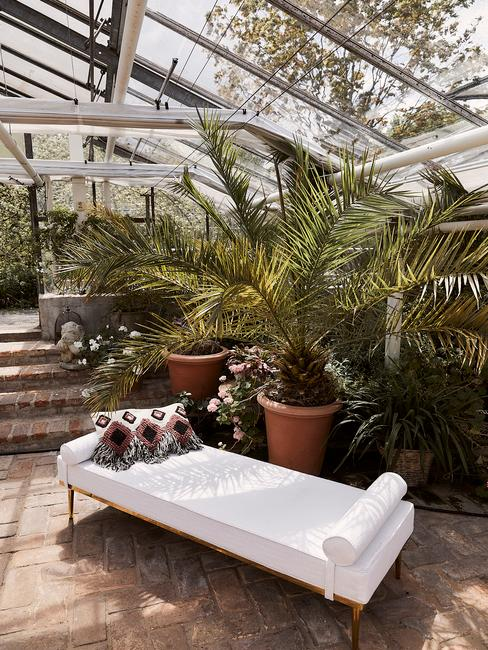 luchtzuiverende planten naast zitbank in wit