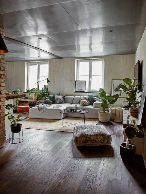 moderne woonkamer met verschillende luchtzuiverende planten