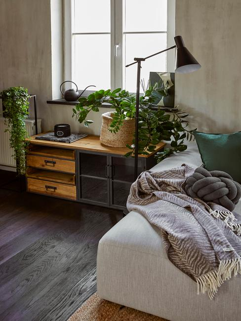 hoekje in woonkamer met verschillende luchtzuiverende planten