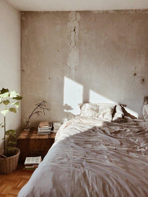 Plant naast bed met afgewerkte muur