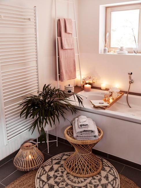 Pampasgras in badkamer met andere planten